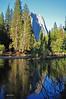 Yosemite Morning 2
