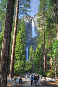 20120324_California_0123_4_5_Optimizera
