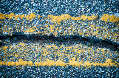 Crack in Road Asphalt