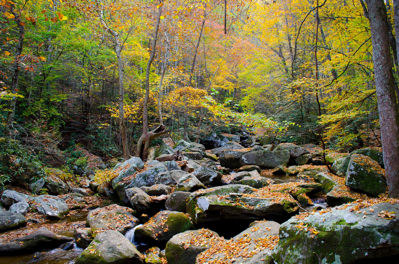 Watery Boulders - South Mountains State Park