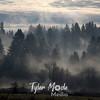 11  November, Misty Morning