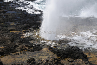 Spouting Horn blow hole