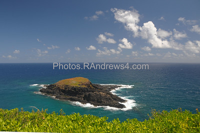 Lighthouse Island from Kilauea Point