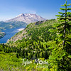 25. Mt. St. Helens and Spirit Lake
