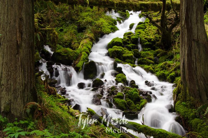 10. Wahkeena Creek
