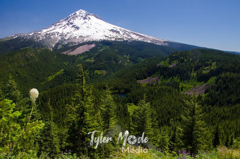 15. Mt. Hood and Burnt Lake