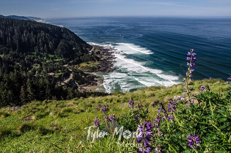 13. Cape Perpetua