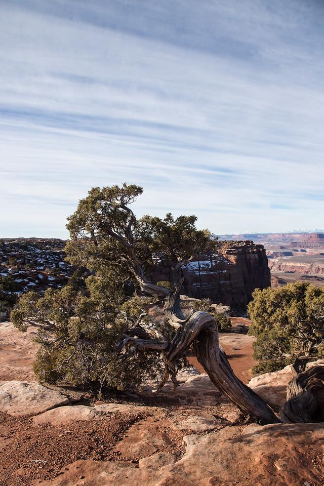 At The Grandview Overlook -- Canyonlands National Park, Utah
