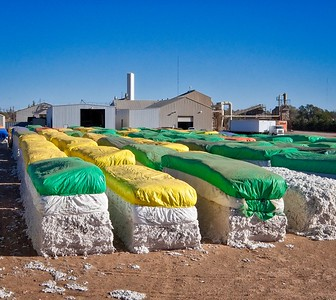 Cotton modules in front of a gin in Ropesville, Texas