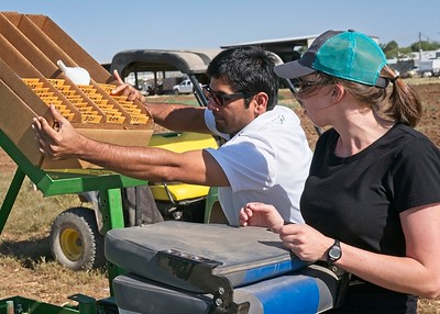 Loading the cone planter with seed packets, each in a very particular order.