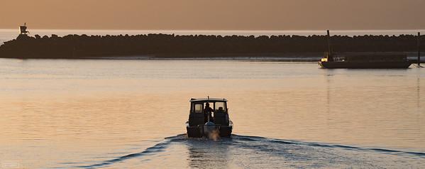 Willapa Bay