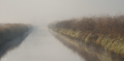 Slough in Fog