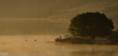 Nicosio Reservoir