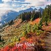312  G Mazama Ridge and Trail