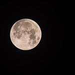 2018-01-31 Super Lunar Eclipse_0008 (Adjusted)
