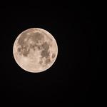 2018-01-31 Super Lunar Eclipse_0001 (Adjusted)