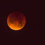2018-01-31 Super Lunar Eclipse_0052 (Adjusted)