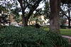 20181217-Telfair Square-IMG_0765