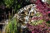20190107-Savannah Botanical Garden-RM5_3208