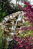 20190107-Savannah Botanical Garden-RM5_3211
