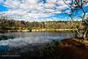 20190107-Savannah Botanical Garden-RM5_3199