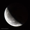 20190121-Blood Moon-3424