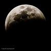 20190120-Blood Moon-3363