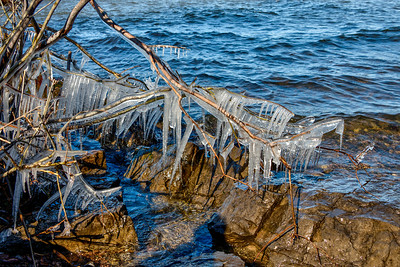 Icicles at Webster Park