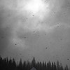 143  G Snowy Reflection Lakes BW V