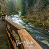 14  G Sweet Creek and Trail
