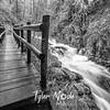 19  G Sweet Creek and Trail BW