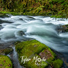 16  G Sweet Creek