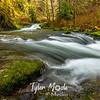 9  G Sweet Creek