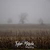 5  G Foggy Trees and Corn Stalks