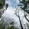 19  G Multnomah Falls and Clouds