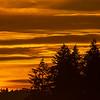 31  G Sunrise