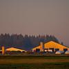 37  G Farm Sunrise