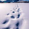 25  G Sukakpak Mountain and Snowshoe Tracks V