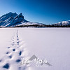 23  G Sukakpak Mountain and Snowshoe Tracks