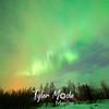 14  G Coldfoot Aurora