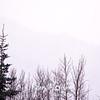 10  G Misty Mountains