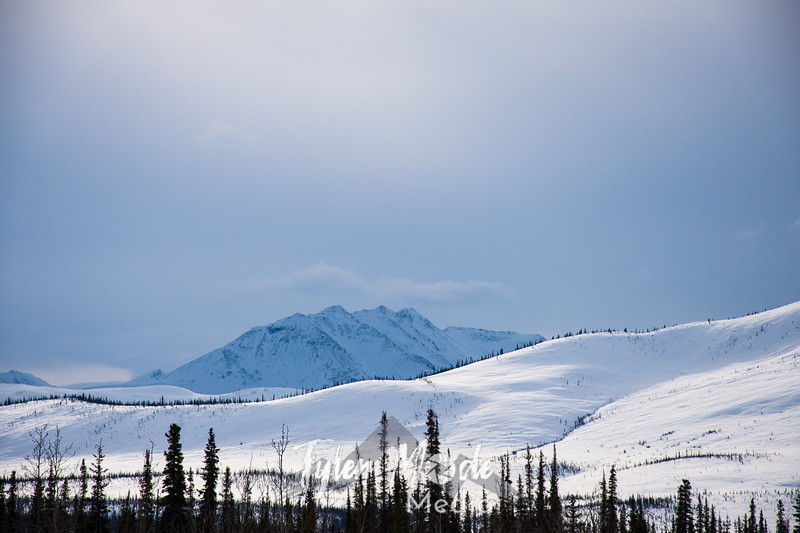 1  G Brooks Range Views