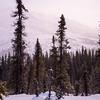34  G Snowy Mountain