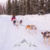 14  G Dog Sled