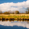 21  G Cloud and Tree Reflections