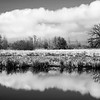 22  G Cloud and Tree Reflections BW