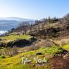 45  G Trail View