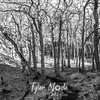 53  G Trail and Trees BW