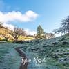 16  G Frosty Trail