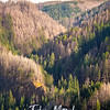 22  G Multnomah Creek Valley V